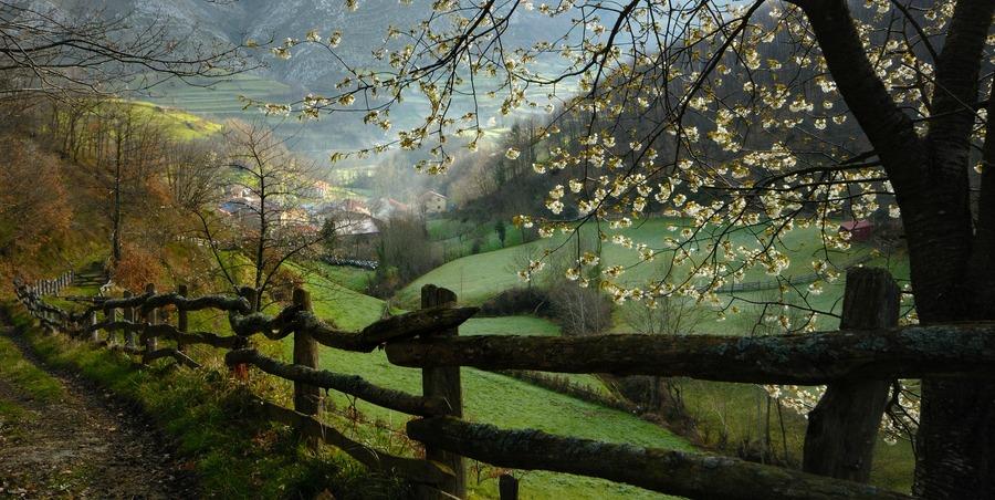 inmersion-linguistica-ingles--asturias