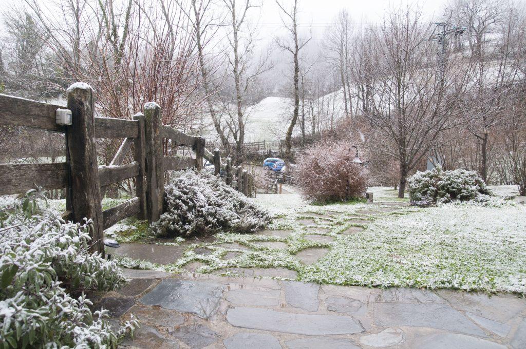 Paisaje nevado en Los Riegos