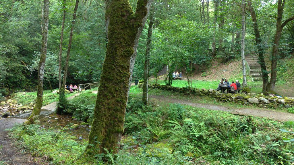 Actividades en inglés en el área recreativa de la Cascada del Chorrón
